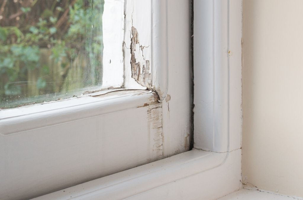 Why Do I Have A Rotted Windowsill, And What Can I Do?